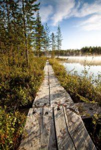 viaggio di nozze finlandia natura e magia 1